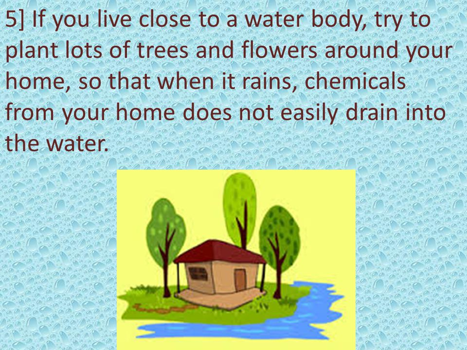 5] If you live close to a water body, try to plant lots of trees and flowers around your home, so that when it rains, chemicals from your home does not easily drain into the water.
